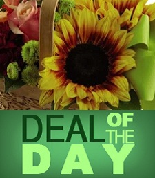 Flower Deal of the Day