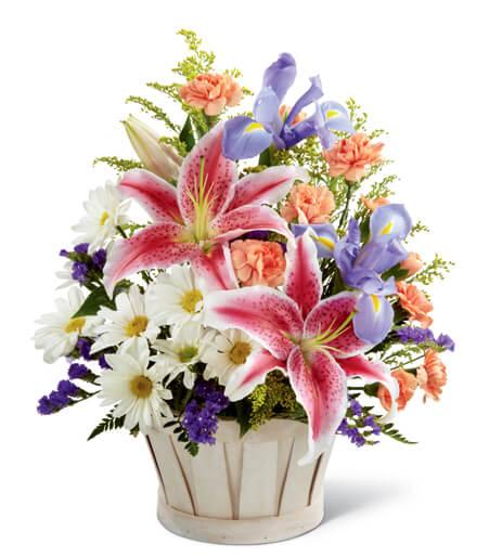 Flowers For Summer