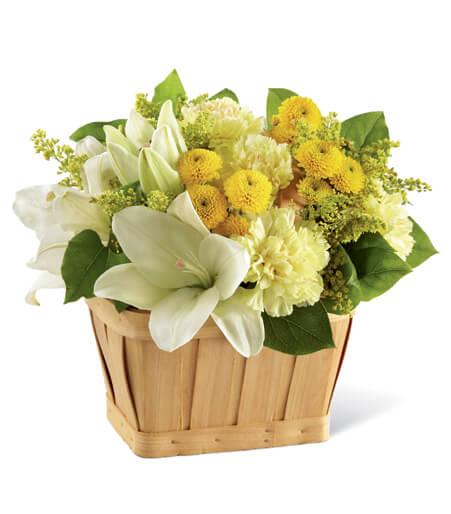 Flowers Of The Season
