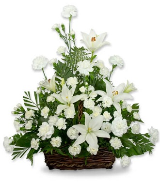 Funeral Peace Lily