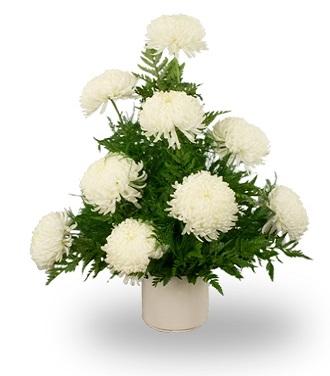 Sympathy Flowers Order