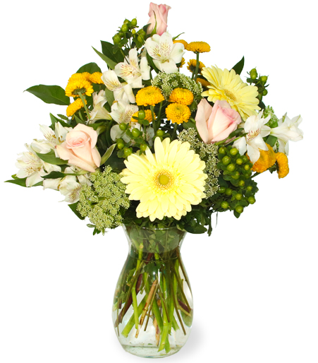 Thank You Flowers Free Delivery
