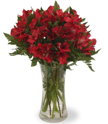 Flower Arrangements Next Day Delivery