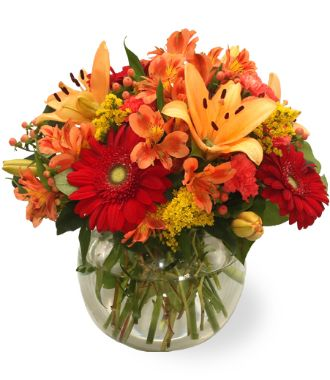 Get Well Flower And Gift