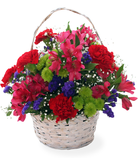 Potted Flower Arrangements Delivery