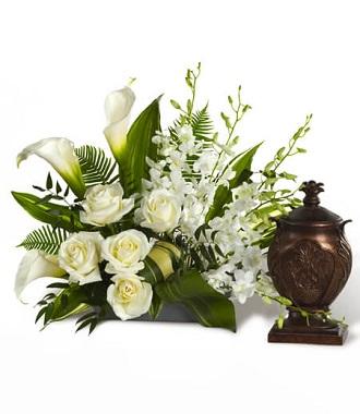 Funeral Plants Delivered