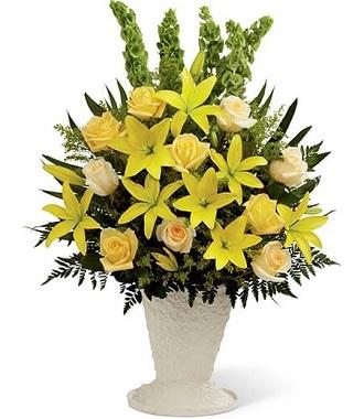 Plants Funeral
