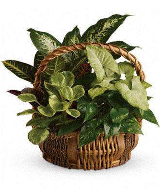 Funeral Flowers Basket