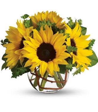Get Well Flower Arrangements