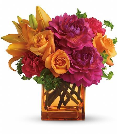 Send Seasonal Flowers