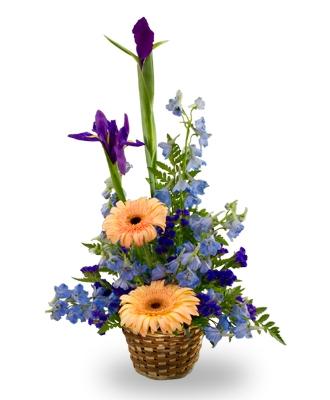 New Baby Flower Arrangements