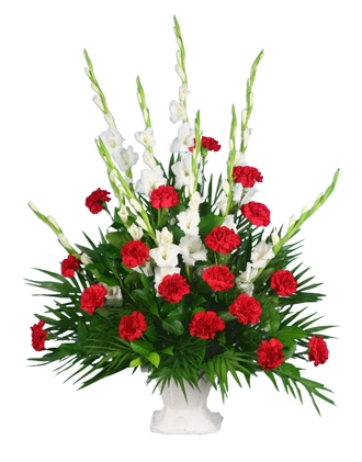 Online Minneapolis Florist