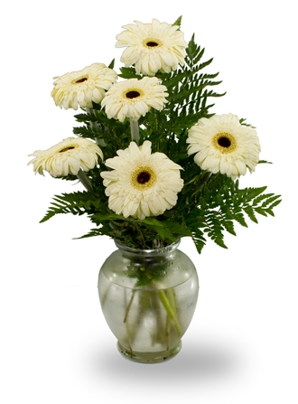 Send Mothers Day Flowers