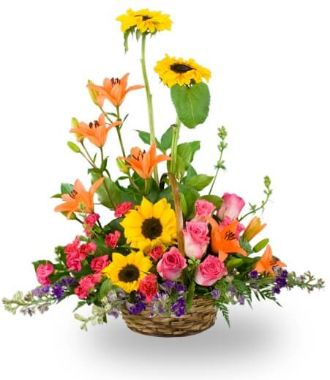 Cheap Next Day Delivery Flowers