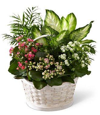 Cheap Funeral Flower Arrangements